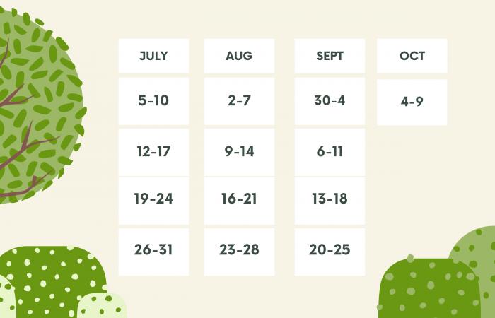 Vuoto Verde Foresta e Bianco Calendario Programma Didattico